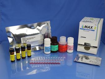 VeratoxForTotal Aflatoxin (8035)